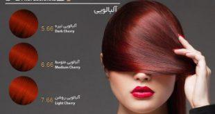 رنگ مو مارک آوایی